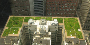 US cities' buy-green schemes reduce their environmental liabilities and costs